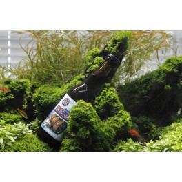 Blue Oyster - Monyo&Rothbeer (0,33l)