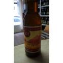 Vandál Brewing - IPA (0,33l)