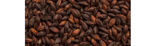 Festő- / csoki / pörkölt / Chocolate maláták